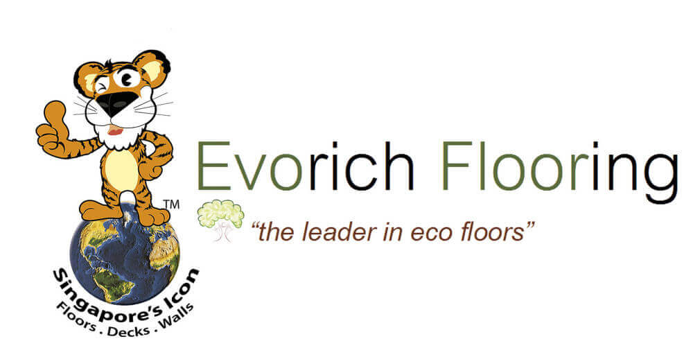 EVORICH LOGO For advanced and safety
